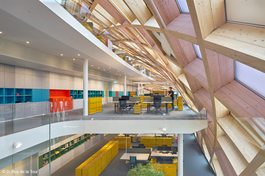 bois lamellé structure bois swatch shigeru ban immeuble de bureaux