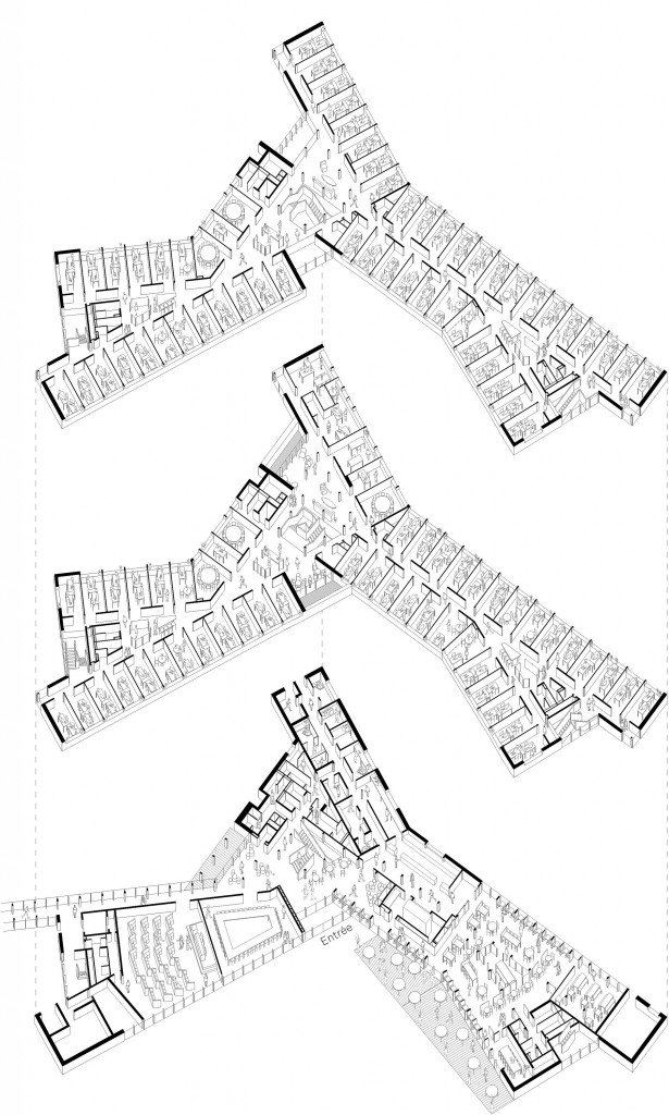 bois lamelle construction bois immeuble de bureaux tertiaire