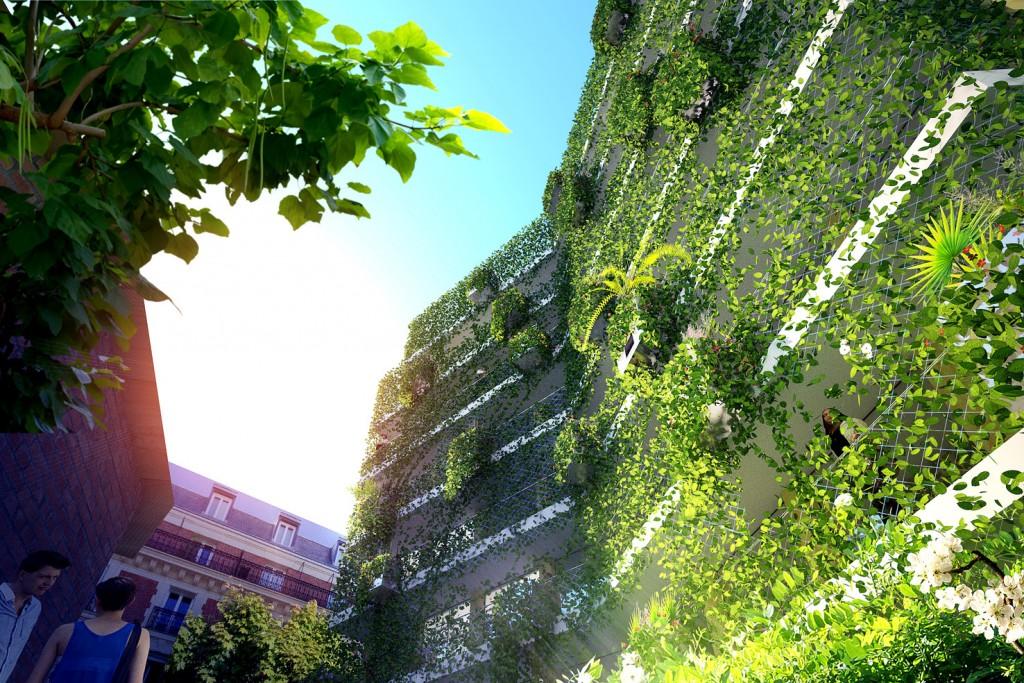 Une façade végétalisée, en totale cohérence avec les solutions constructives biosourcées